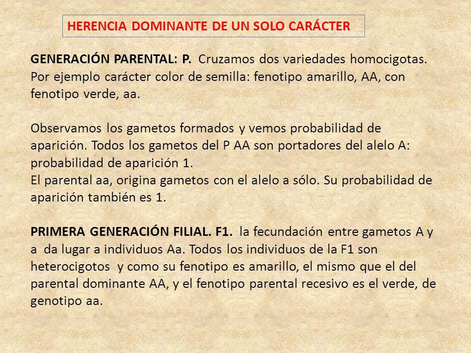 HERENCIA DOMINANTE DE UN SOLO CARÁCTER