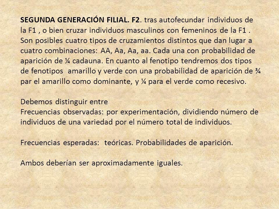 SEGUNDA GENERACIÓN FILIAL. F2