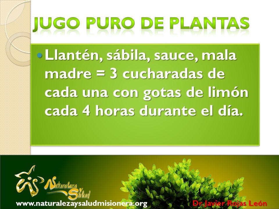Jugo puro de plantas Llantén, sábila, sauce, mala madre = 3 cucharadas de cada una con gotas de limón cada 4 horas durante el día.