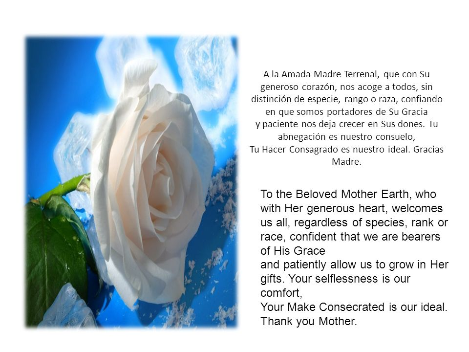 Tu Hacer Consagrado es nuestro ideal. Gracias Madre.