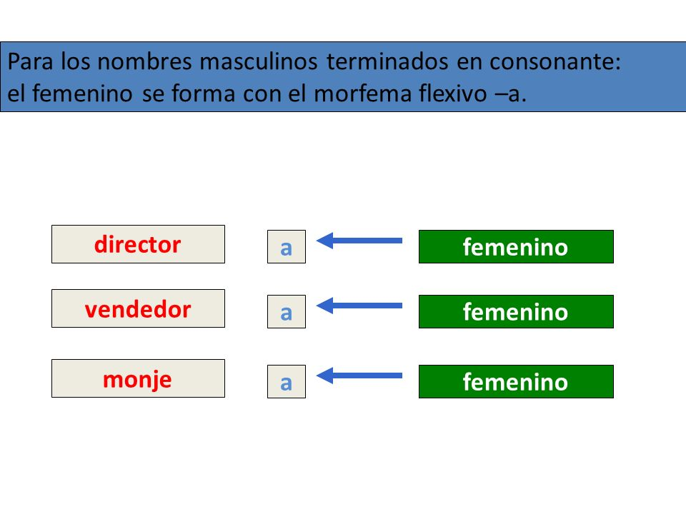 Para los nombres masculinos terminados en consonante:
