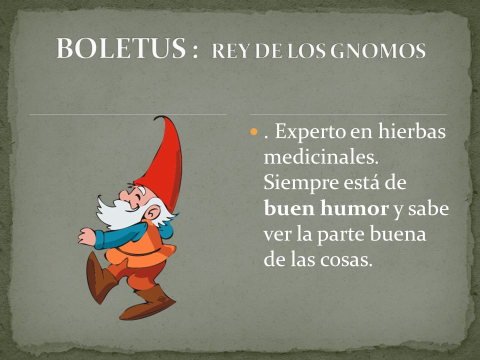BOLETUS : REY DE LOS GNOMOS