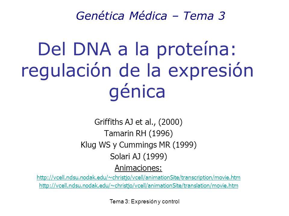 Del DNA a la proteína: regulación de la expresión génica