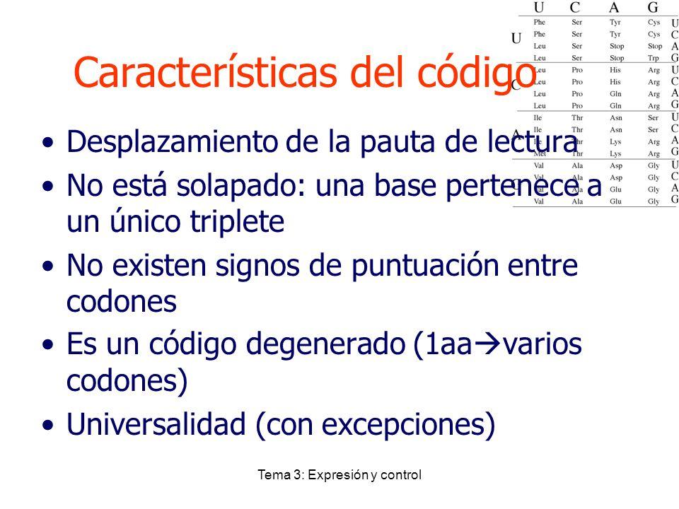 Características del código