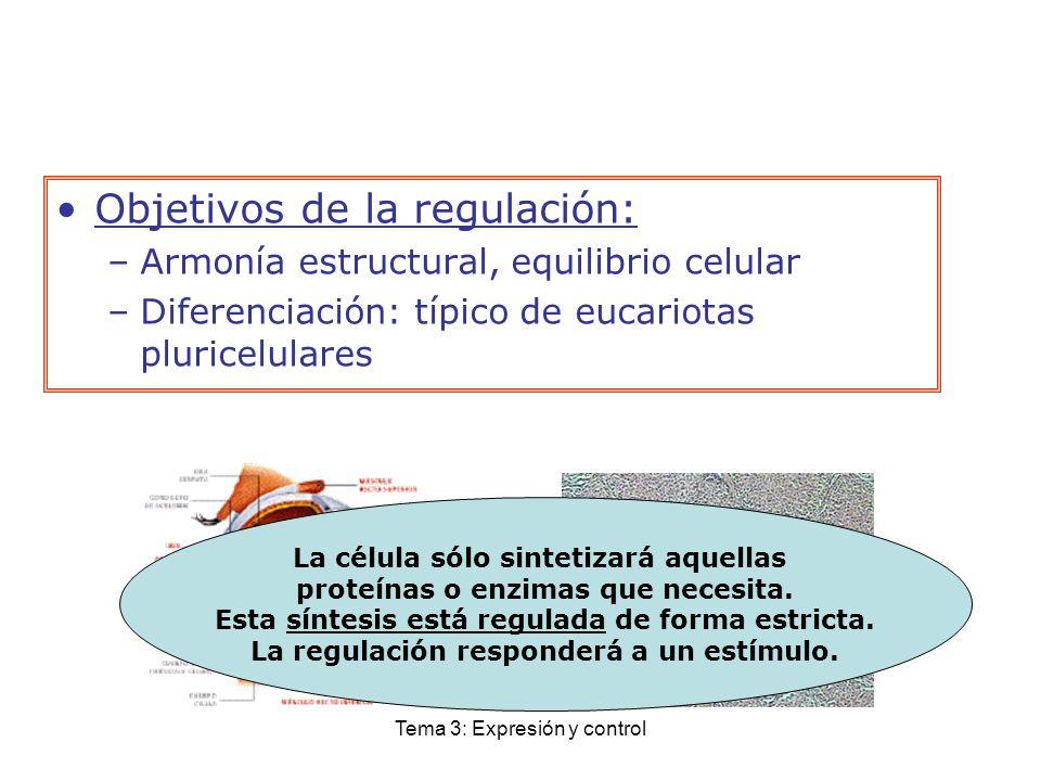 Objetivos de la regulación: