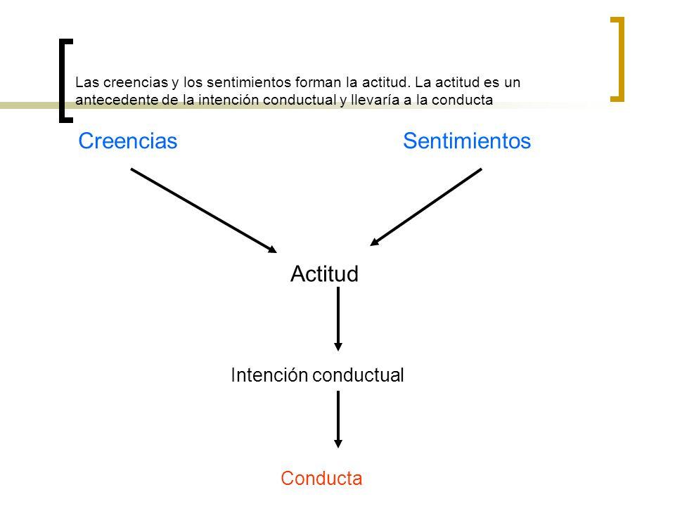 Creencias Sentimientos Actitud Intención conductual Conducta