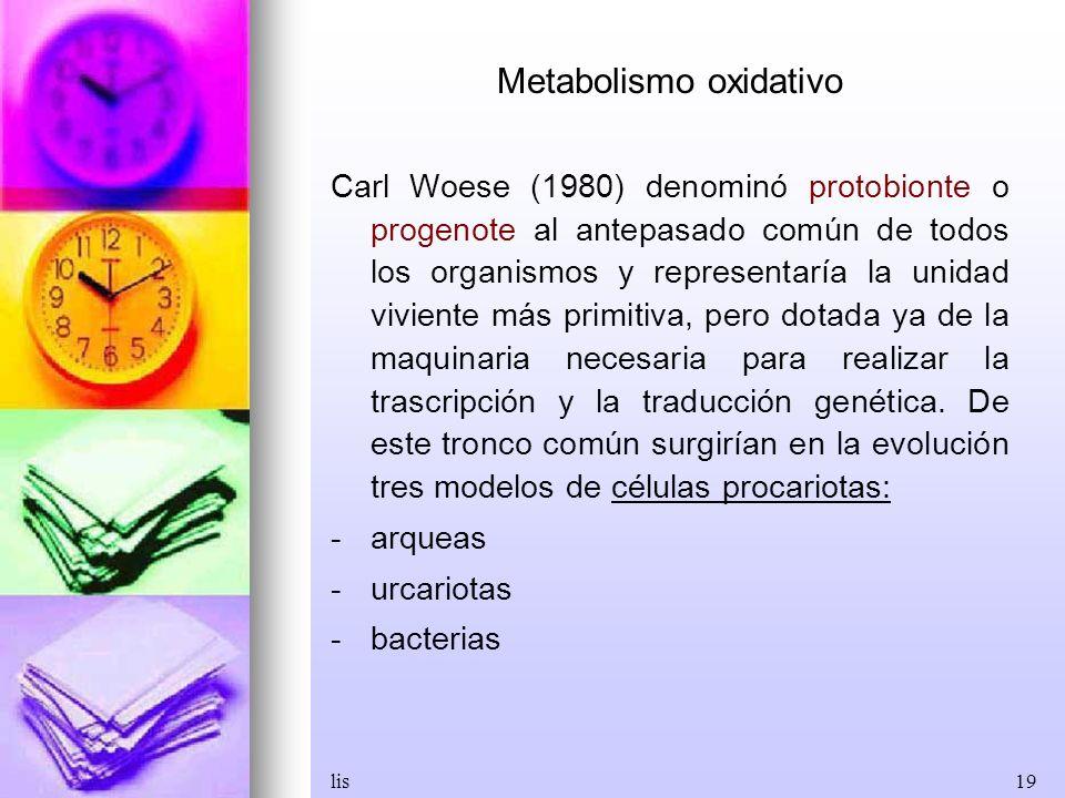 Metabolismo oxidativo
