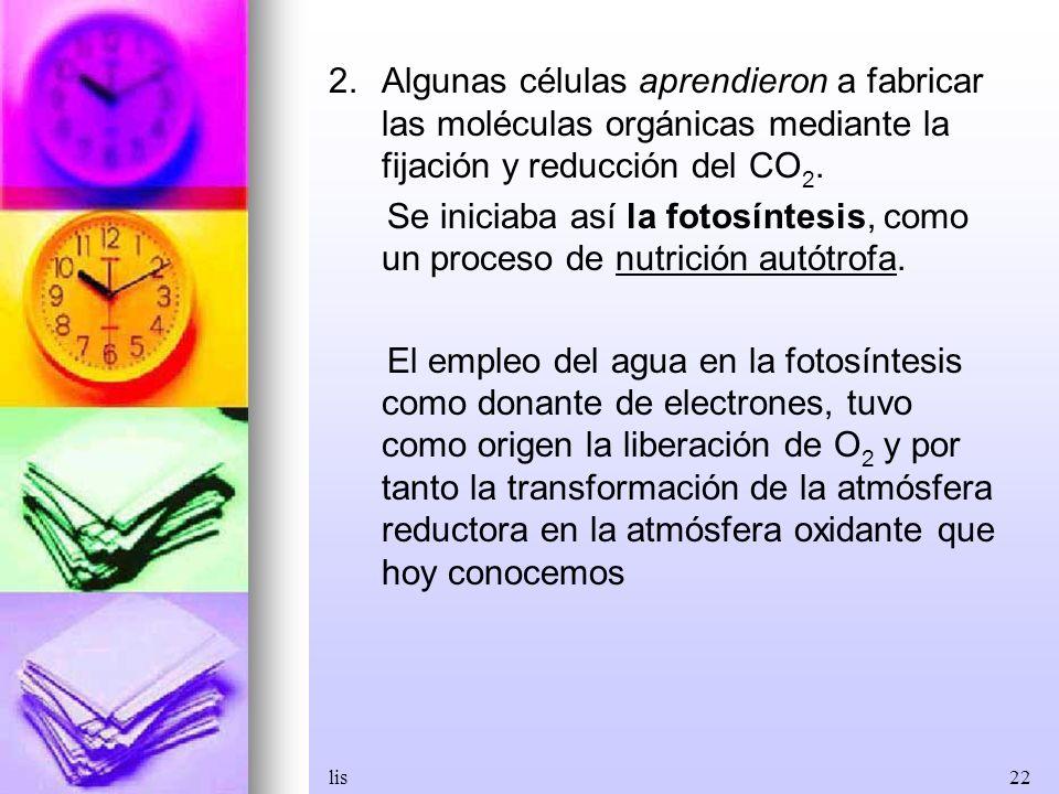Algunas células aprendieron a fabricar las moléculas orgánicas mediante la fijación y reducción del CO2.