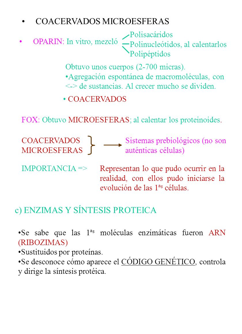 COACERVADOS MICROESFERAS
