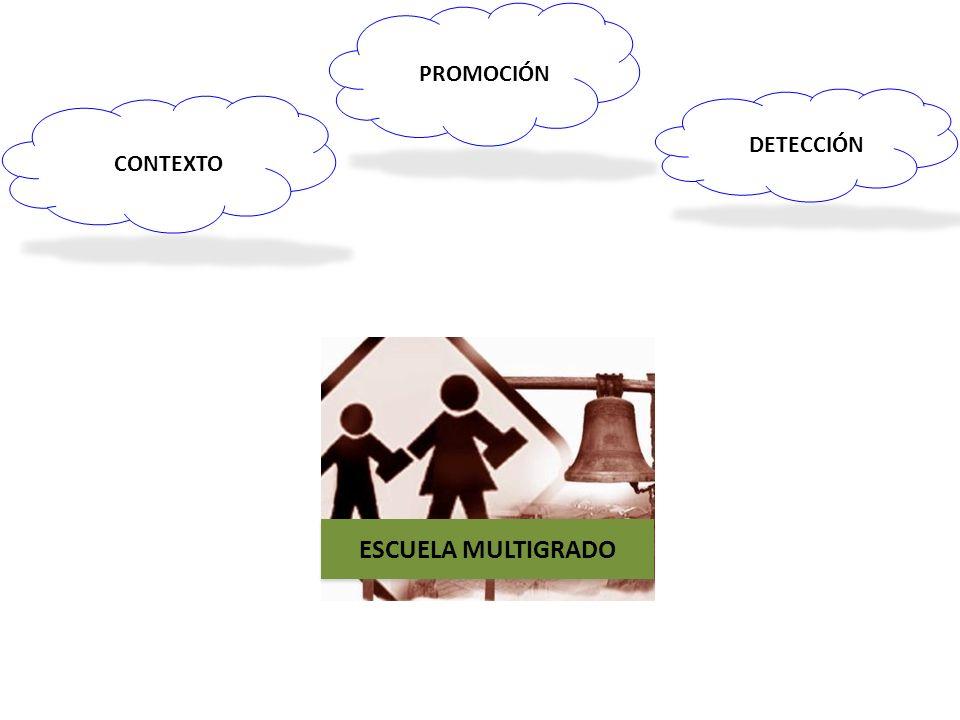 PROMOCIÓN DETECCIÓN CONTEXTO ESCUELA MULTIGRADO