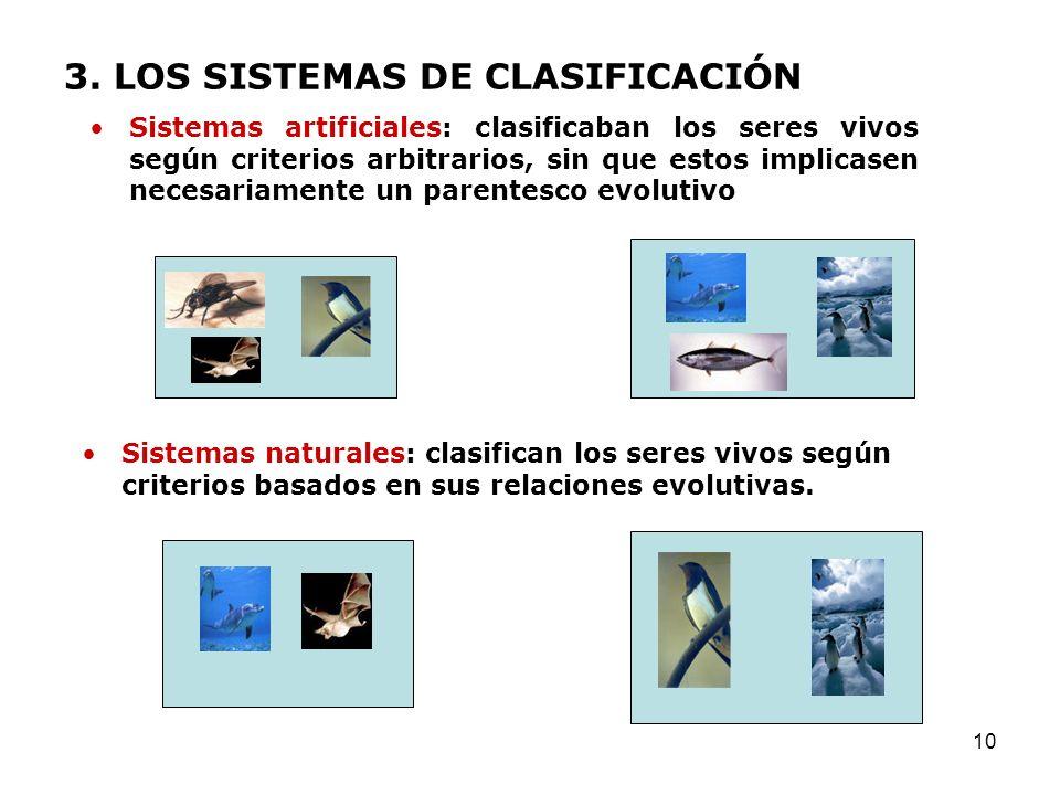 3. LOS SISTEMAS DE CLASIFICACIÓN