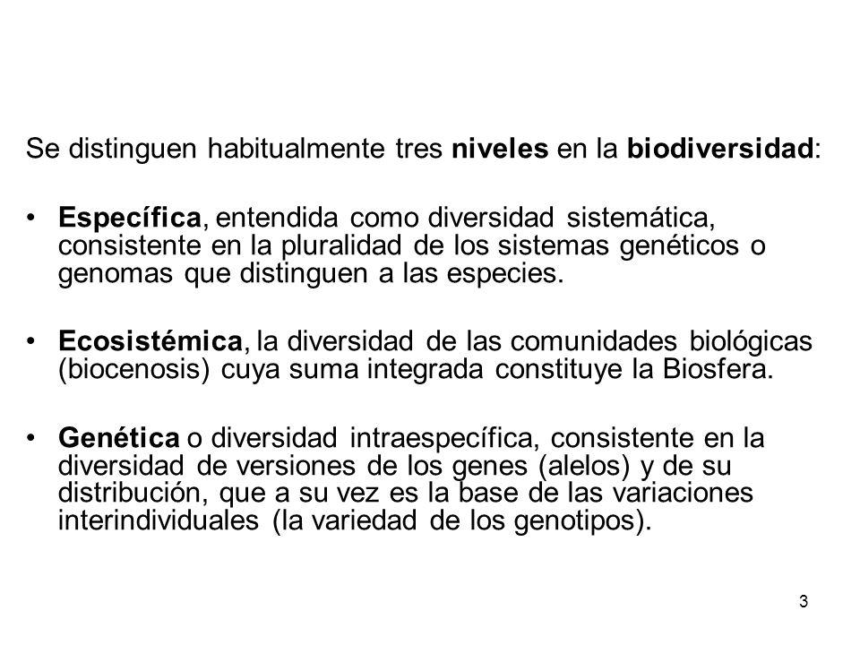 Se distinguen habitualmente tres niveles en la biodiversidad: