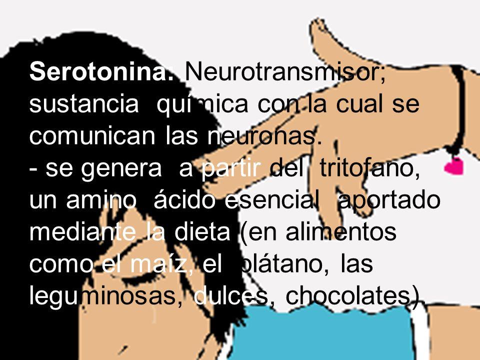 Serotonina: Neurotransmisor; sustancia química con la cual se comunican las neuronas.