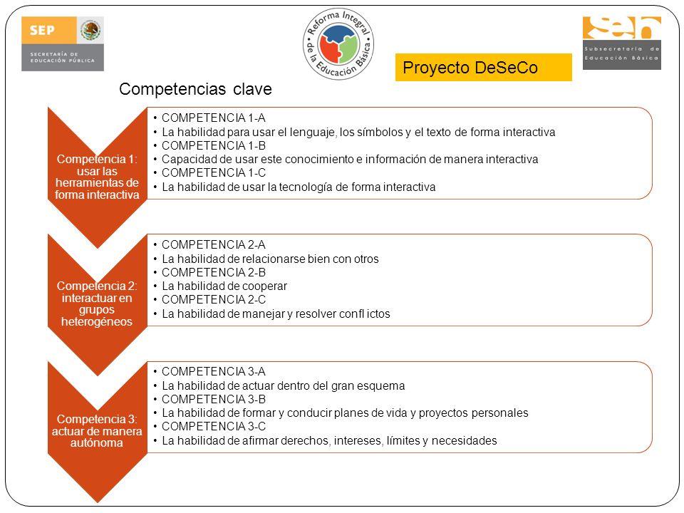 Proyecto DeSeCo Competencias clave