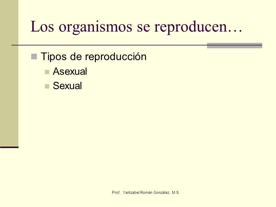 Los organismos se reproducen…