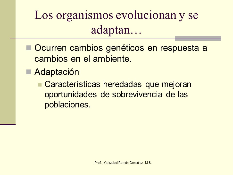 Los organismos evolucionan y se adaptan…