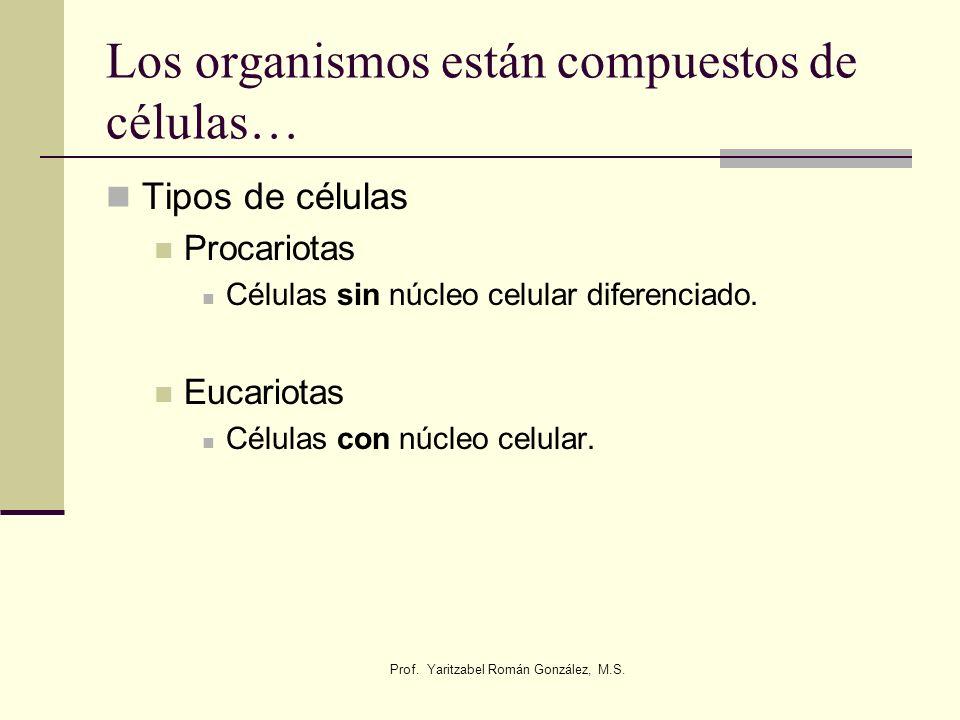Los organismos están compuestos de células…