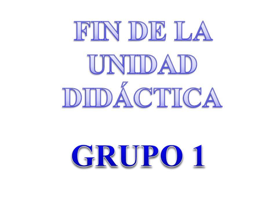 FIN DE LA UNIDAD DIDÁCTICA