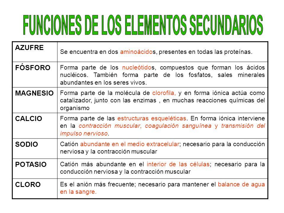 FUNCIONES DE LOS ELEMENTOS SECUNDARIOS