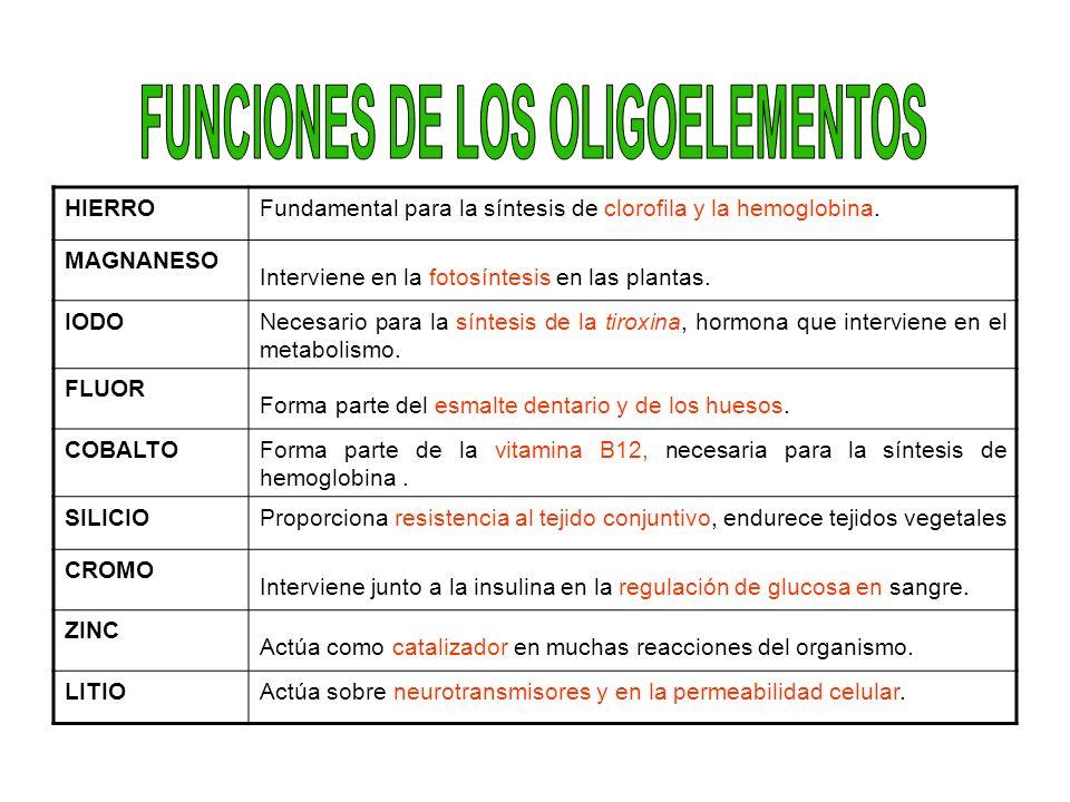 FUNCIONES DE LOS OLIGOELEMENTOS