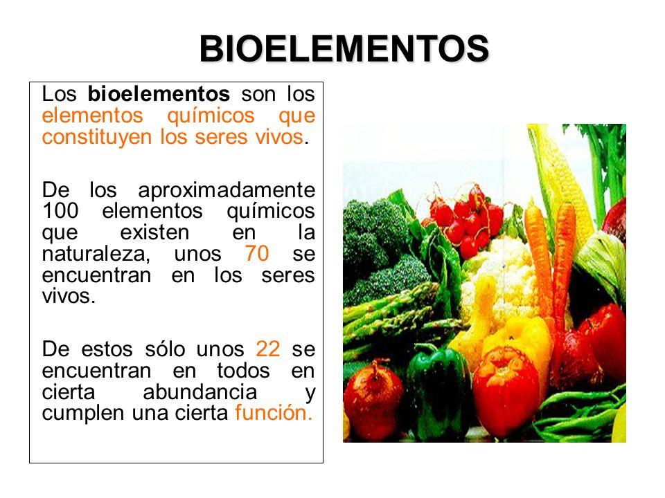 BIOELEMENTOS Los bioelementos son los elementos químicos que constituyen los seres vivos.