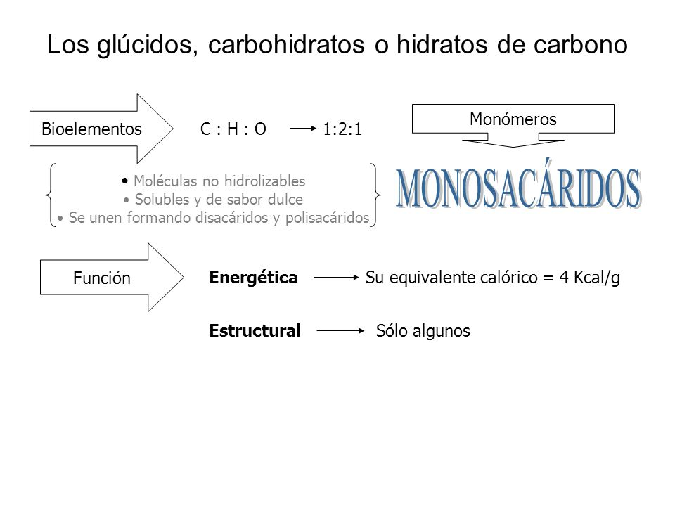 Los glúcidos, carbohidratos o hidratos de carbono