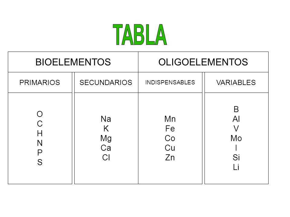 TABLA BIOELEMENTOS OLIGOELEMENTOS O C H N P S Na K Mg Ca Cl Mn Fe Co