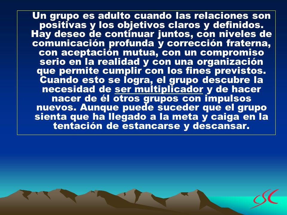 Un grupo es adulto cuando las relaciones son positivas y los objetivos claros y definidos.