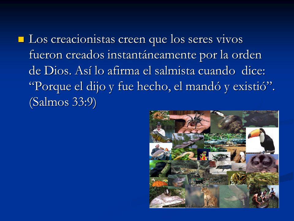 Los creacionistas creen que los seres vivos fueron creados instantáneamente por la orden de Dios.