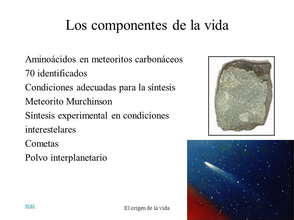 Los componentes de la vida