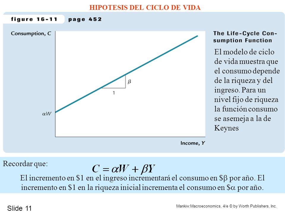 HIPOTESIS DEL CICLO DE VIDA