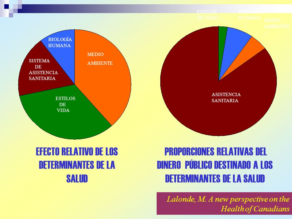 EFECTO RELATIVO DE LOS DETERMINANTES DE LA SALUD