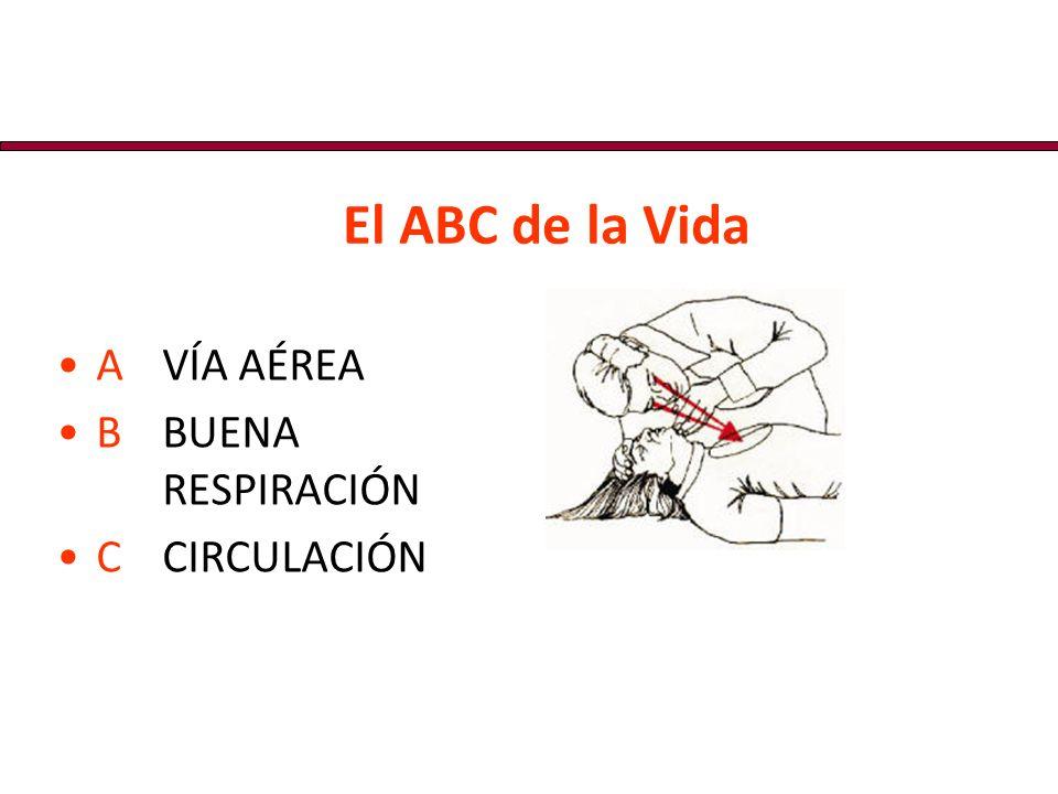 El ABC de la Vida A VÍA AÉREA. B BUENA RESPIRACIÓN.
