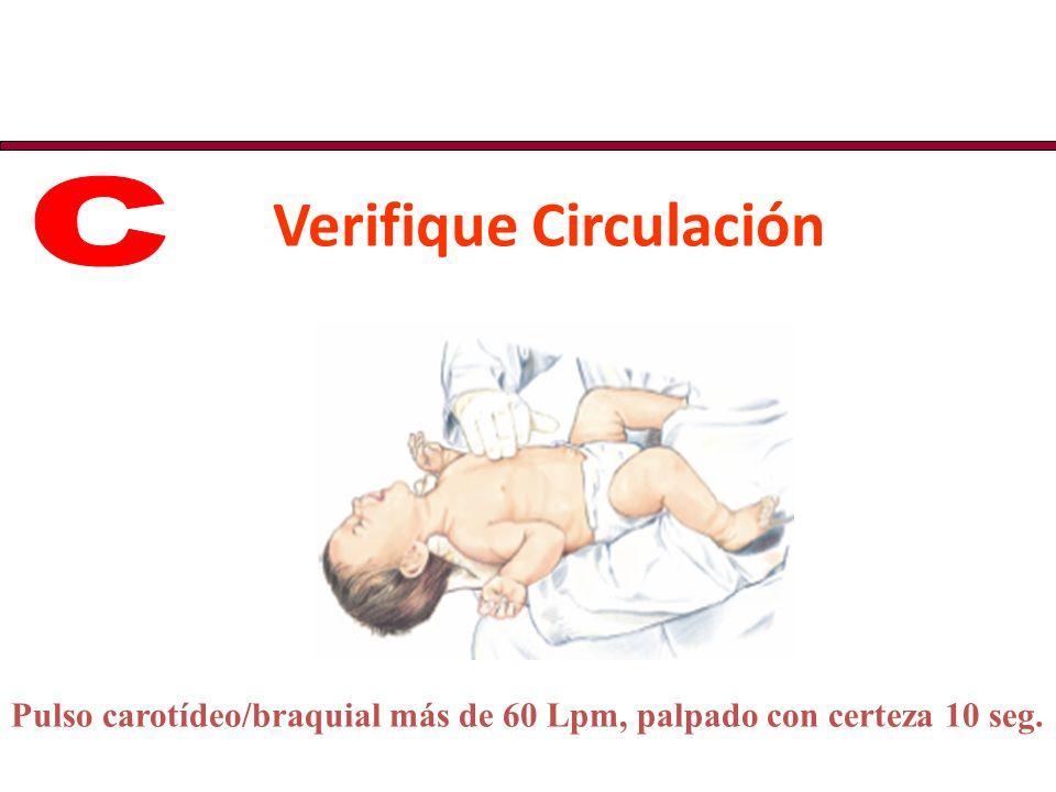 Verifique Circulación
