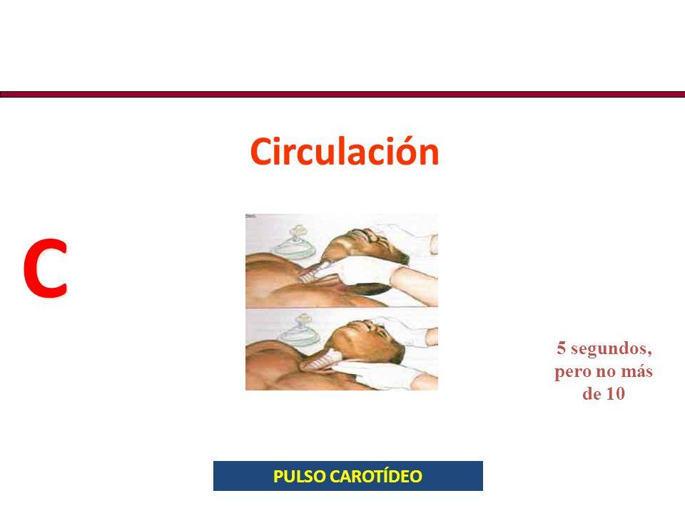Circulación C 5 segundos, pero no más de 10 PULSO CAROTÍDEO