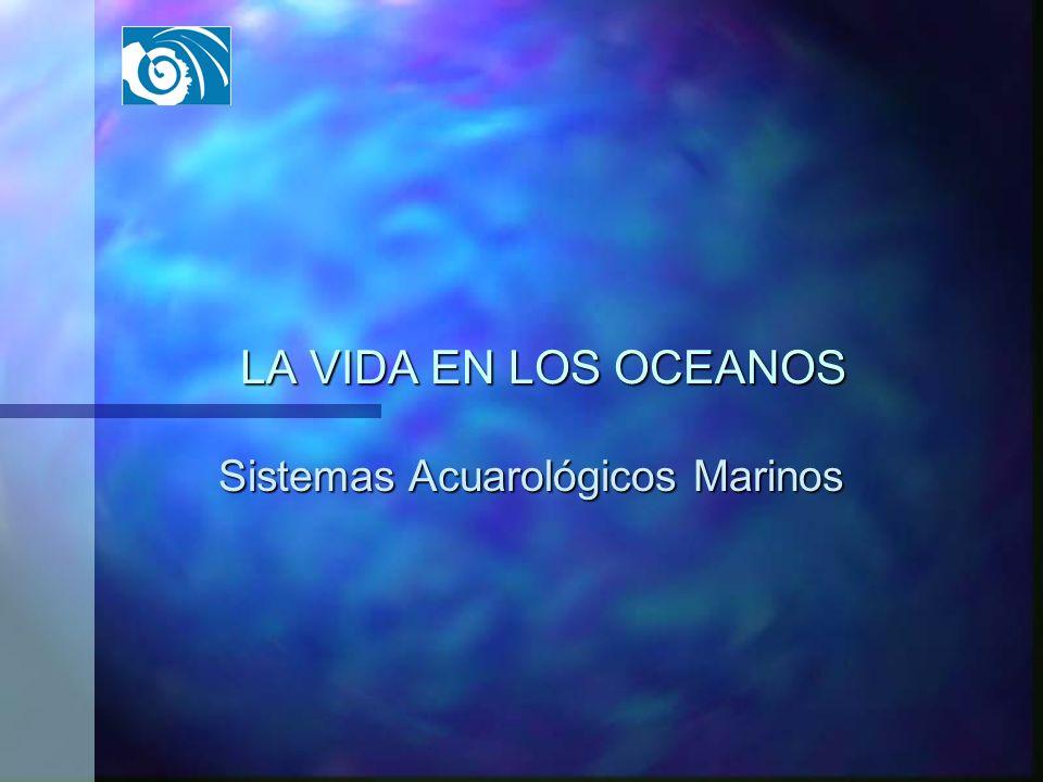 Sistemas Acuarológicos Marinos
