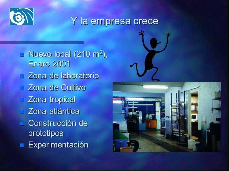 Y la empresa crece Nuevo local (210 m2), Enero 2001