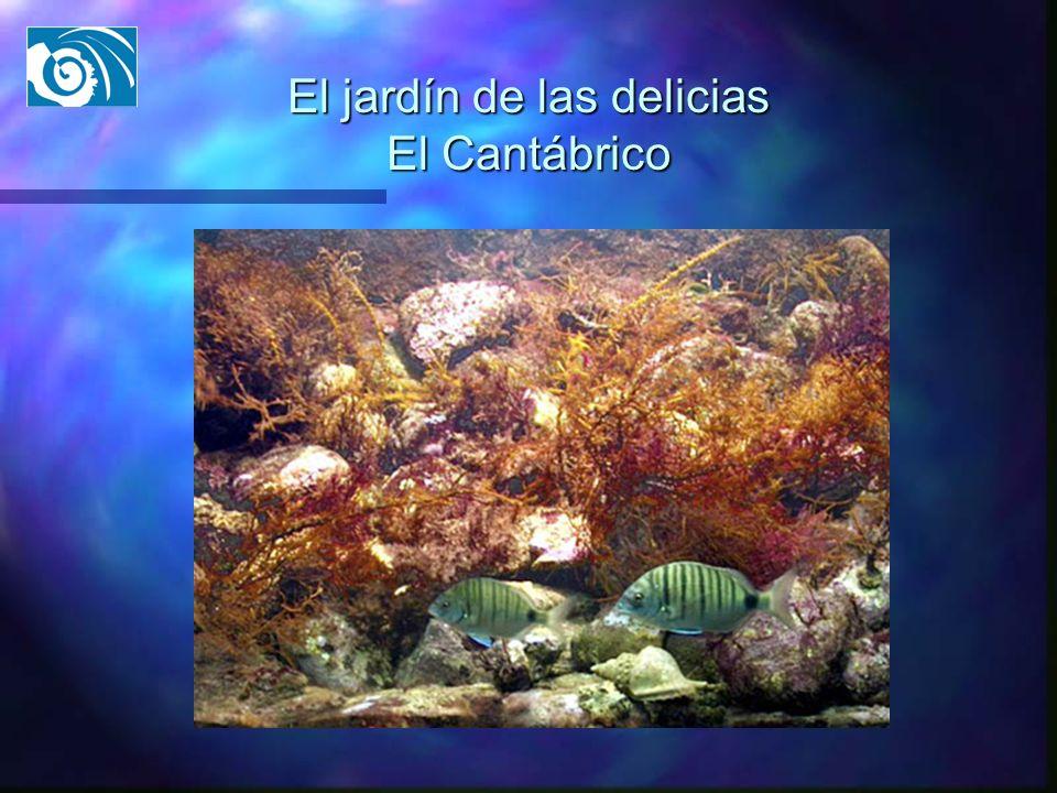 El jardín de las delicias El Cantábrico