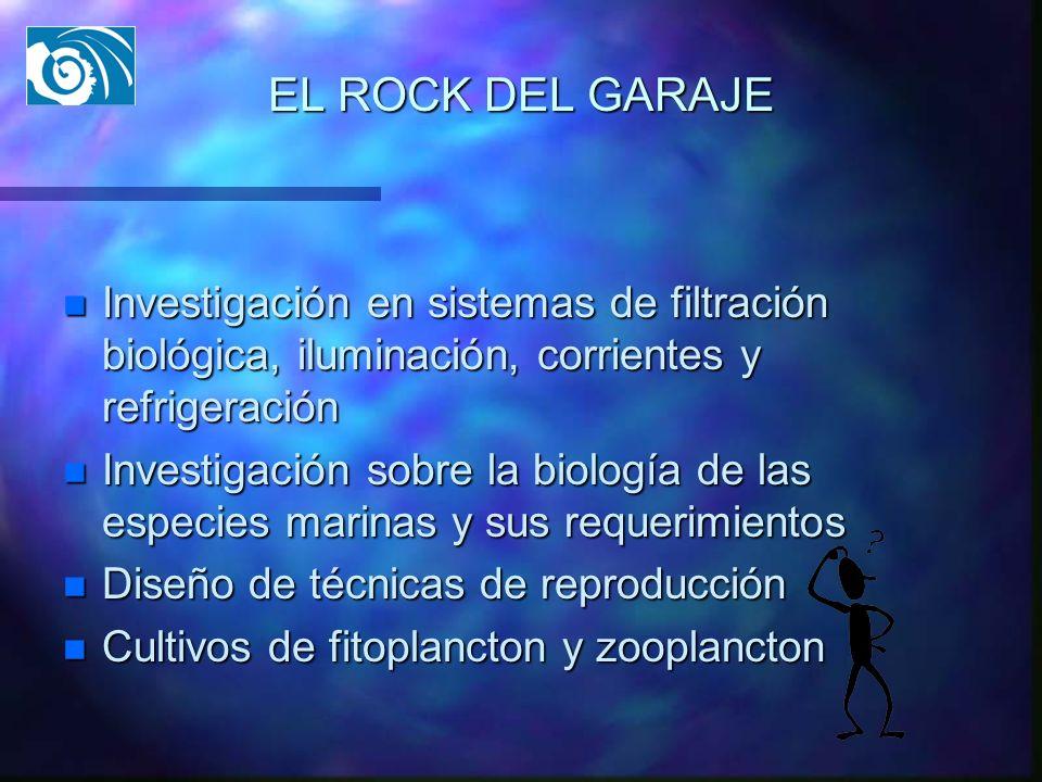 EL ROCK DEL GARAJE Investigación en sistemas de filtración biológica, iluminación, corrientes y refrigeración.