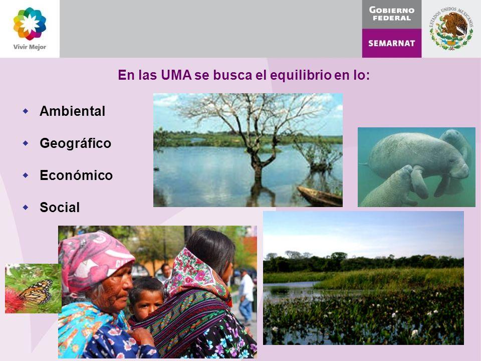 En las UMA se busca el equilibrio en lo: