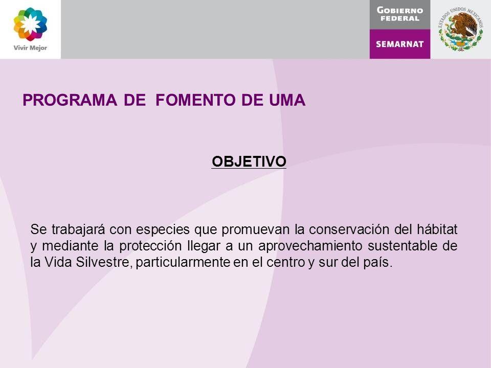PROGRAMA DE FOMENTO DE UMA
