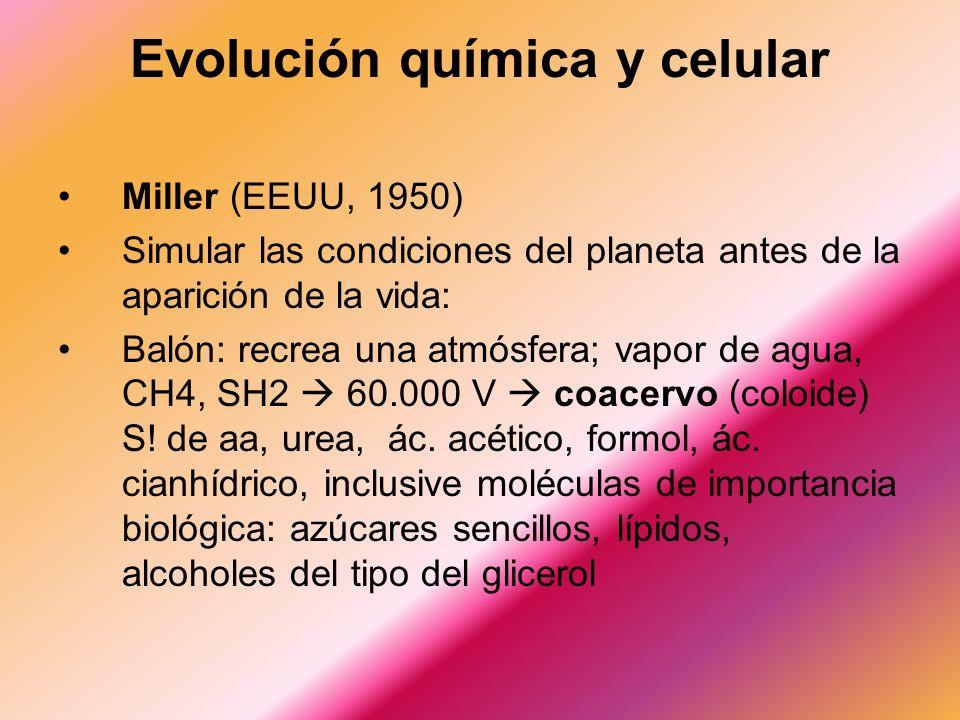 Evolución química y celular