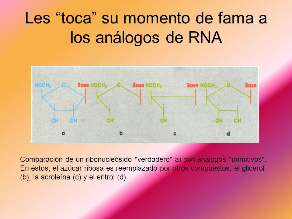 Les toca su momento de fama a los análogos de RNA