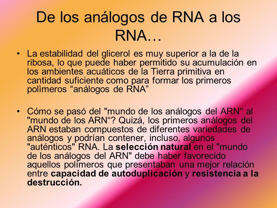 De los análogos de RNA a los RNA…