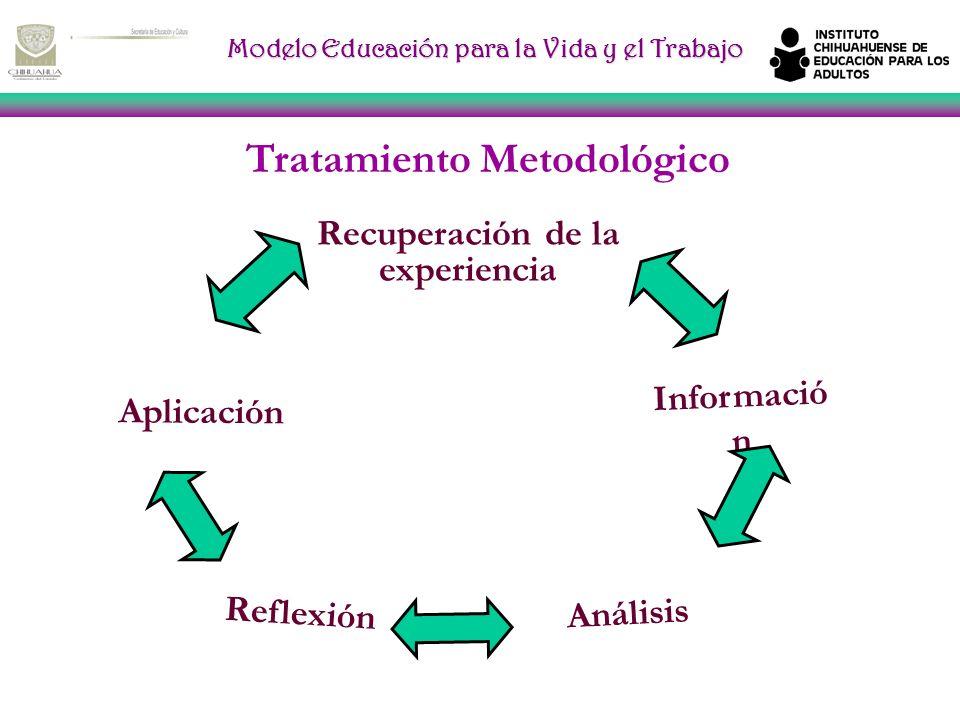 Tratamiento Metodológico Recuperación de la experiencia