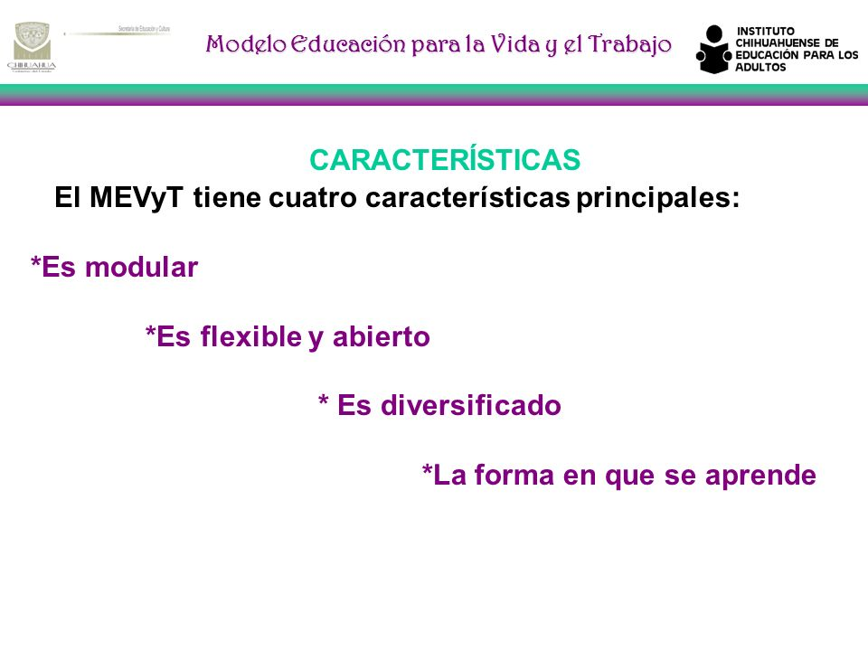 CARACTERÍSTICAS El MEVyT tiene cuatro características principales: *Es modular. *Es flexible y abierto.