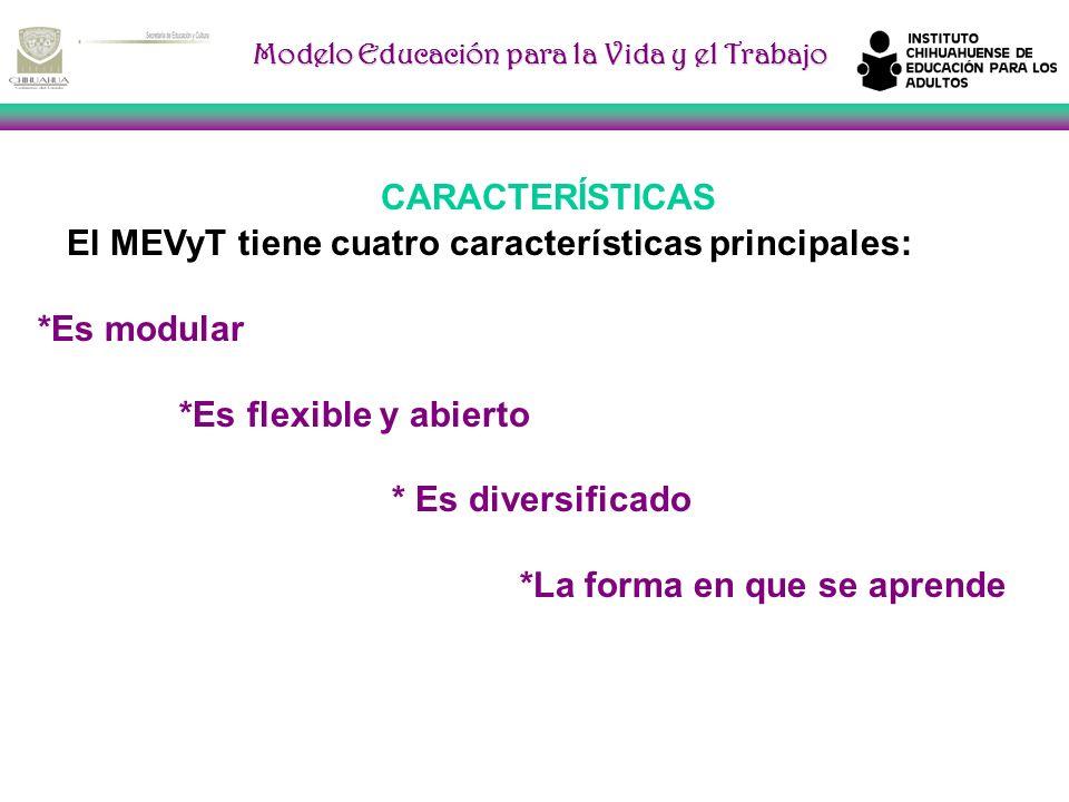 CARACTERÍSTICASEl MEVyT tiene cuatro características principales: *Es modular. *Es flexible y abierto.