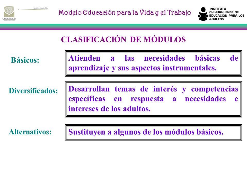 CLASIFICACIÓN DE MÓDULOS