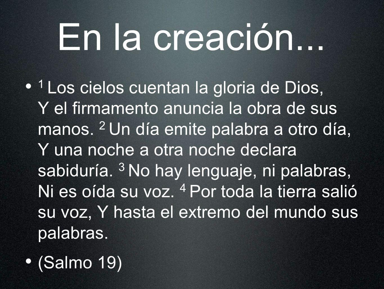 En la creación...