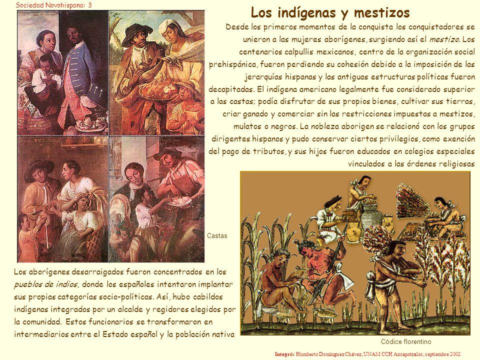 Los indígenas y mestizos